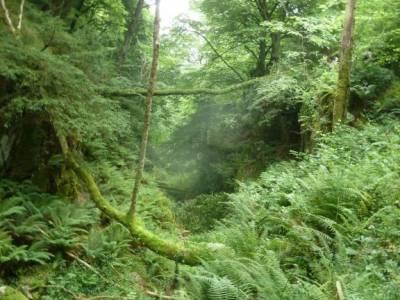 Descenso Sella_Sierra del Sueve; circo gavarnie rey de patones velas pedraza parque natural de graza